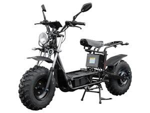 THE BEAST scooter électrique