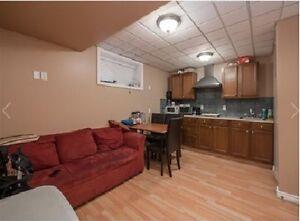 Eagle Ridge - Furnished basement for rent