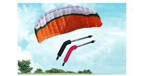 Brand New Control power kite 3m 4 dual lines for buggy Sport Kite