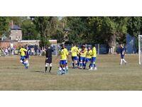 Goalkeeper Wanted Men's 11 a side Football Team