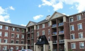 Lovely 2 Bedroom plus office/ den available Aug 1- South End!