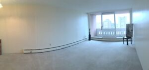 11th Floor River-View Downtown 1 Bedroom Available January 1!