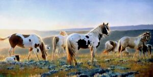 NANCY GLAZIER LIMITED EDITION PRINTS HORSE ART FROM...
