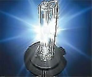HID Xenon Replacement bulbs and LED Bulbs for any car