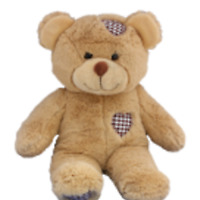 Build A bear friend party in your home for much less!