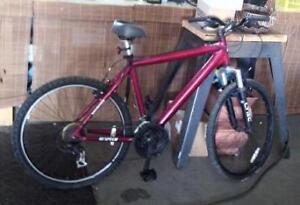 18 Speed CYTEC Bicycle - New Seat & Pedals
