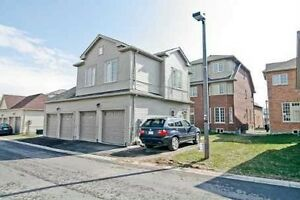 1BR COACH HOUSE APT FOR RENT NEAR 9TH LINE/BUR OAK-MARKHAM