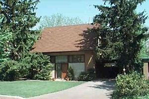 Nice Cozy Home In Prime Location Of Edwards Gardens