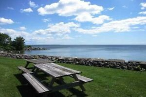 Sun-Filled 2 Bedroom Renovated Condo In Waterfront Location!