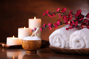 FAIRY DAY SPA - A SPA EXPERIENCE IN YOUR HOME Kitchener / Waterloo Kitchener Area image 3