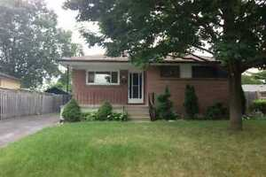 Beautiful Bungalow- Central Whitby- Lower Level- Avail-Oct 1st