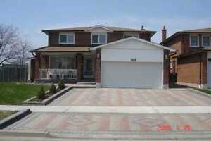house for rent near humber college local house rentals