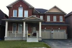 Desireable North Ajax Enclaved Rental