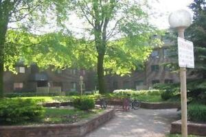 Taunton/Simcoe 3 Bedroom Beauty / Awesome Location
