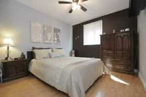 Beautiful 3 bedroom in Courtice for rent