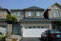 1 bedroom WALKOUT basement at View Green Cres,