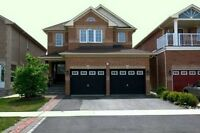 Spotless, Fabulous Executive 4Br Home + 1 Bed at Mississauga!