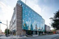 Downtown Toronto  2 bedroom furnished condo for Pan Am games
