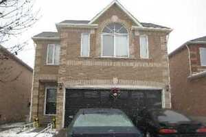 House for Rent at Bovaird & Chinguacousy