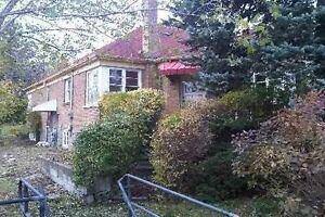 $800 - Large Oversized Bachelor Basement Apartment With Lots Of