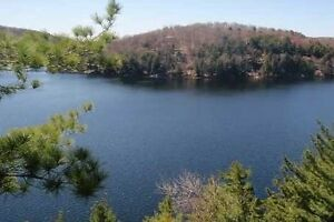 6.47 Acres Of Picturesque Lake Of Bays Lakefront