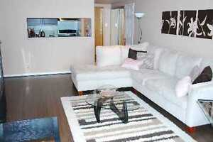 Lake front Condo in DownTown Toronto/Parking