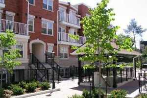 2 Bedroom Townhome Near York University at Keele and Finch $1800