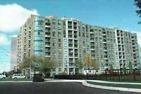 ★Looking for rent?★ NorthYork /Scarborough Area Condo/Apartment