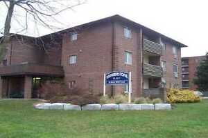 Renovated 2 bedroom Condo for rent