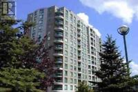 ** Unbelievable Price For Newly Renovated Condo **