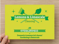Lemons & Limescale- Cleaning/Gardening and removals