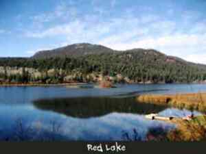 Red Lake Lot - 1 hour from Kamloops, BC- Sale or Lease to Own