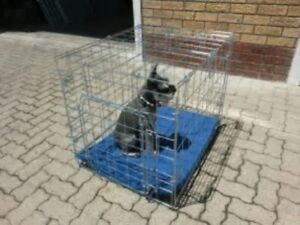 A SILVER MEDIUM DOG CRATE FOR SALE - IRON BRIDGE