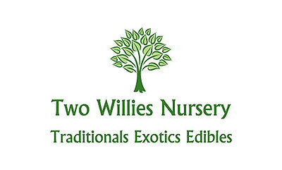 Two Willies Nursery