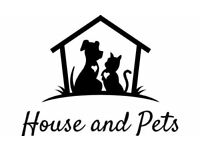 Cat Sitter in Woodbridge