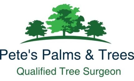 PETES PALMS & TREES Butler Wanneroo Area Preview