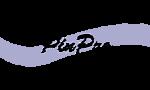 PinPro-9