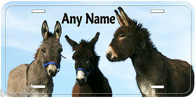 3 Donkey Any Name Personalized Novelty Car Auto License Plate