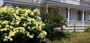 Oceanview Vacation Rental - LaHave