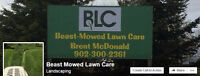 BLC Beast Mowed Lawn Care Mowing Landscaping