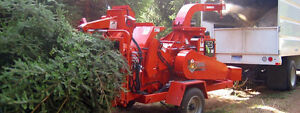 Tree removal chipping disposal service.