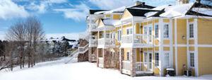 1 -2 bedroom condo, Horseshoe Winter Resort