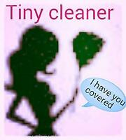 Tiny Cleaner In Barrie.