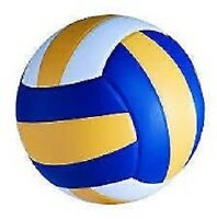 Volleyball - Senior aged 45+ group looking for players.