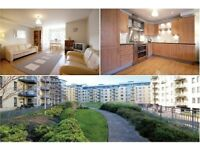 Unfurnished One Bedroom Apartment on Lindsay Road - The Shore - Available 17/08/20118
