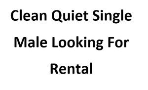 Quiet Working Male Looking For Rental