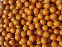 5KG MONSTER CRAB 20mm BOILIES carp fishing (stock always available)