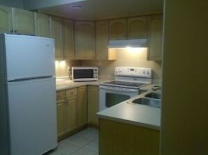 Bachelor Suite in great location near UofA Campus!