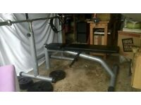 Olympic Standard Bench System: Squat Rack, Cast Iron Weights, Bar Bell Kit, and Dumbells.