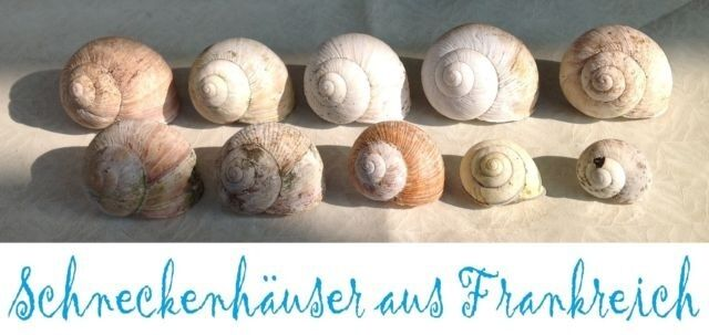 Schneckenh user aus frankreich dekoration aquarium Dekoration frankreich